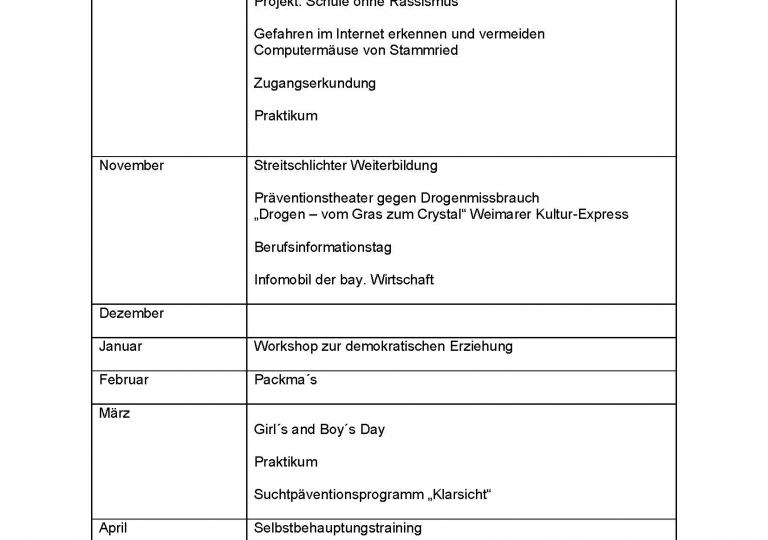 Beratungskonzept der Sophie Scholl MS.docx_Seite_9